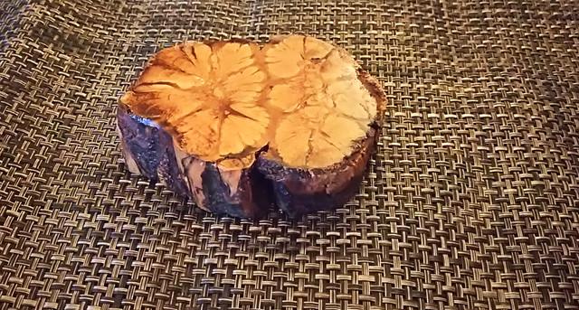 樹木 コースター 雑貨